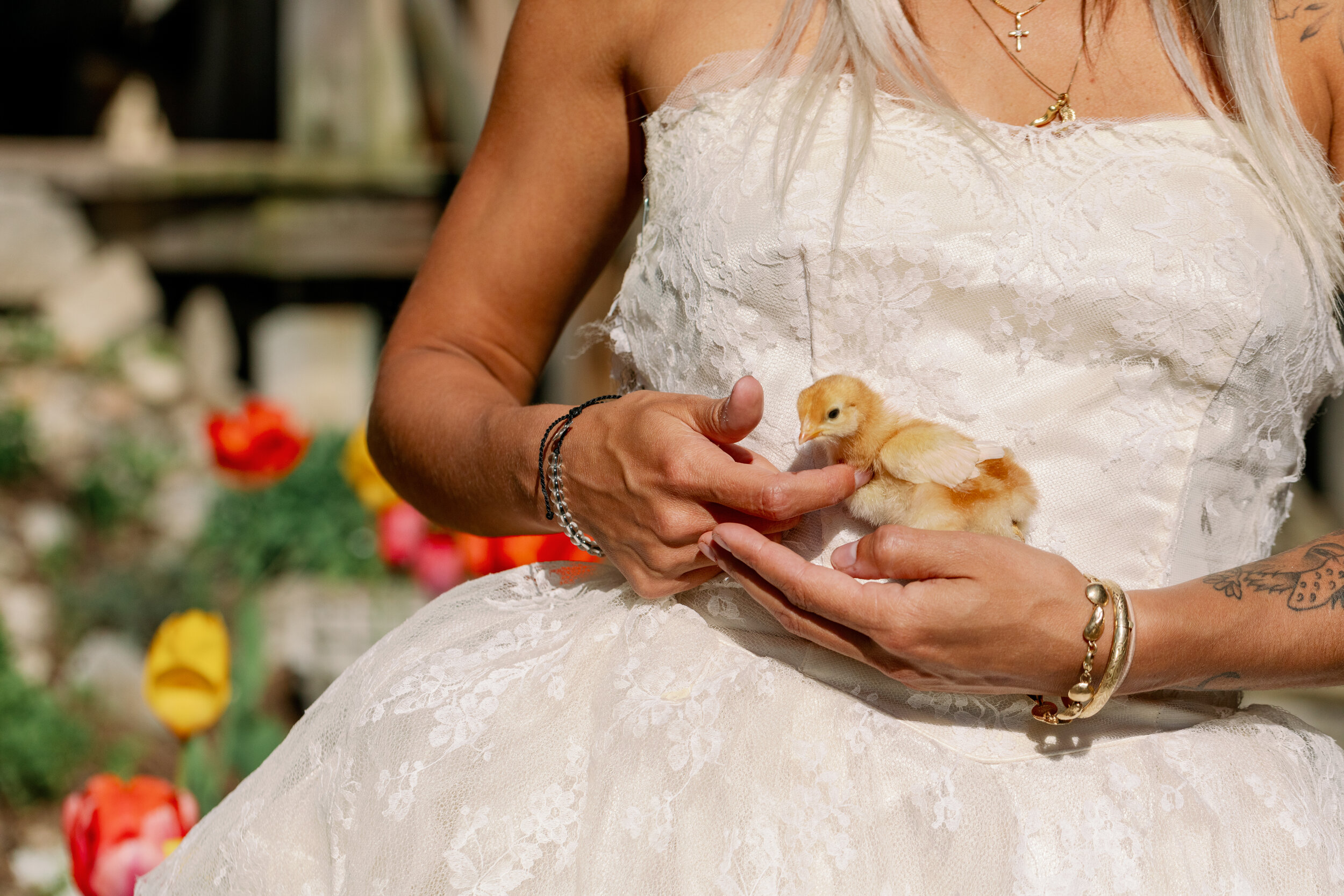 bride and baby chick